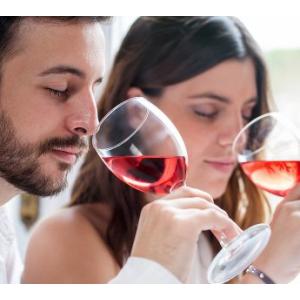 Weinkurs für Einsteiger